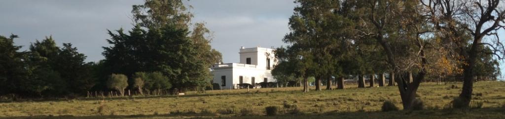historic cattle estate uruguay